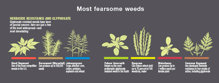 Most Fearsome Weeds