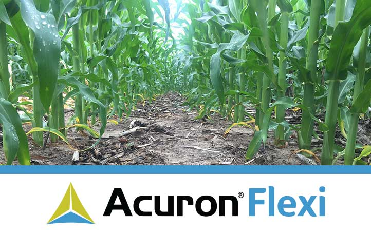 acuron flexi