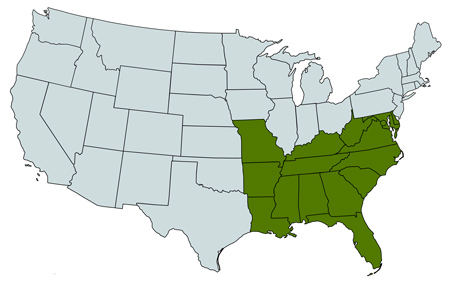 Map of southern regions from Herbicide Recommendation Sheets includes Louisiana, Mississippi, North Carolina, South Carolina, Florida, Delaware, Maryland, Virginia, West Virginia, Alabama, Georgia, Tennessee, Arkansas, Missouri, Kentucky